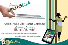Apple iPad 2 WiFi Giveaway Drawing Stitches n Dishes