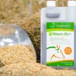 Probiotics-for-Horses-Great-Gut.jpeg