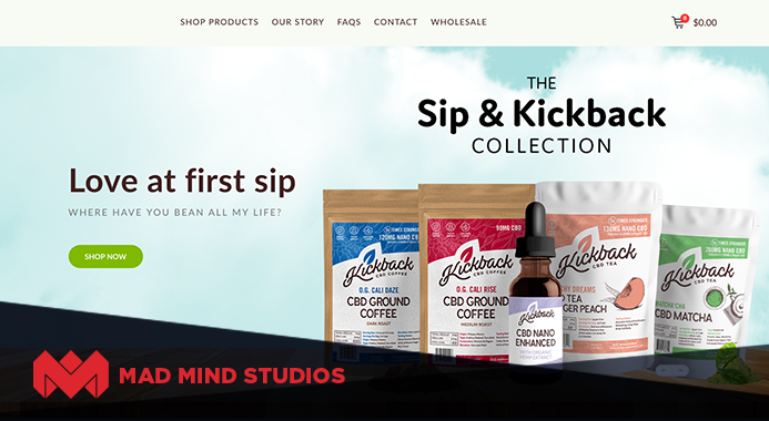 Mad Mind Studios Offers Web Design, SEO, and Marketing Services