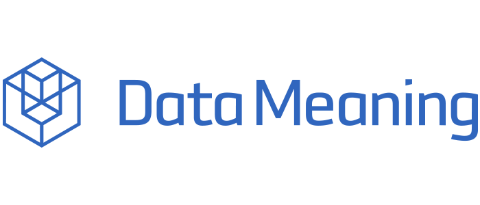 Data Meaning Services Group