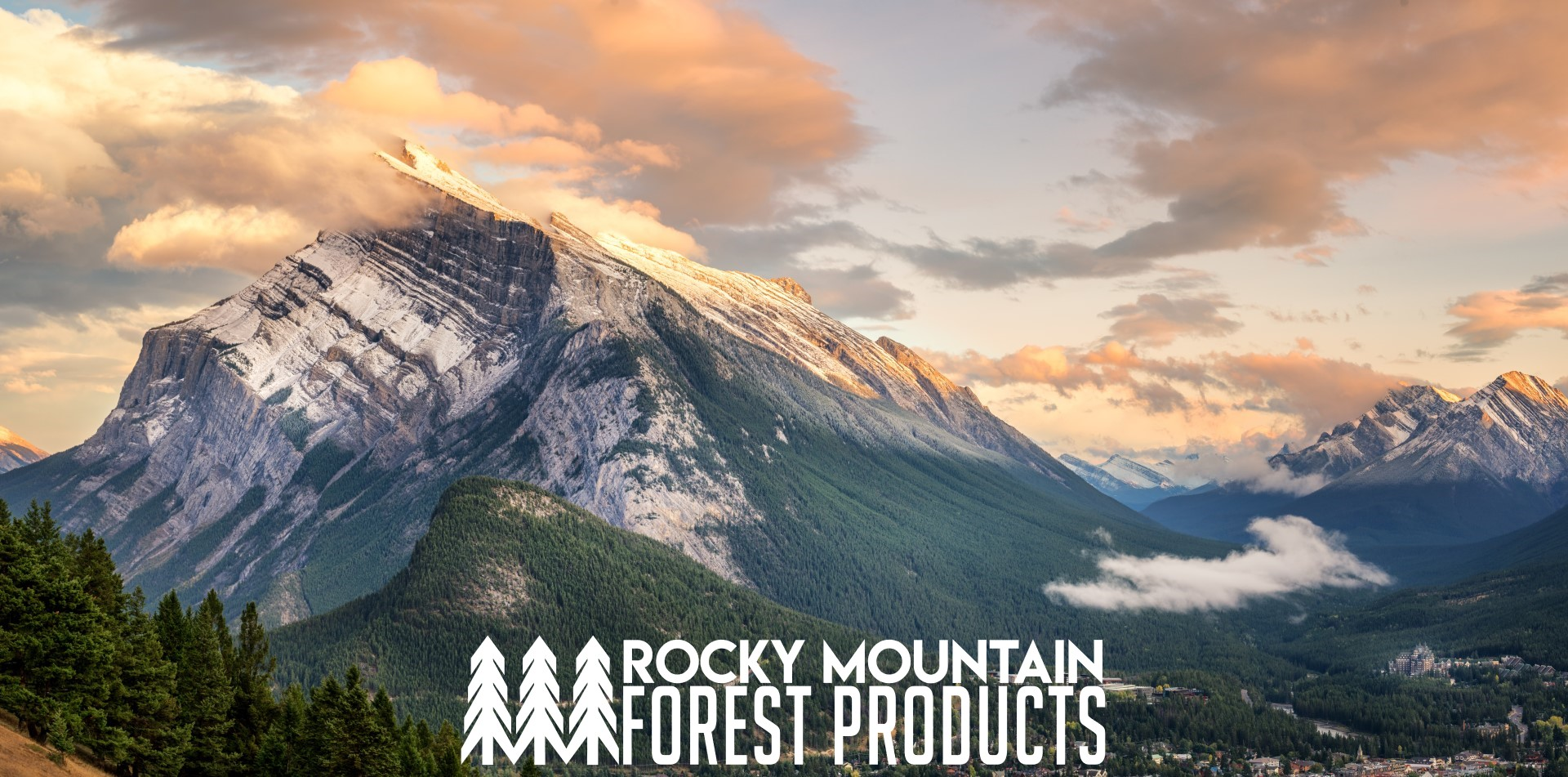 Rocky Mountain Forest Products Ceo Chosen For Denver